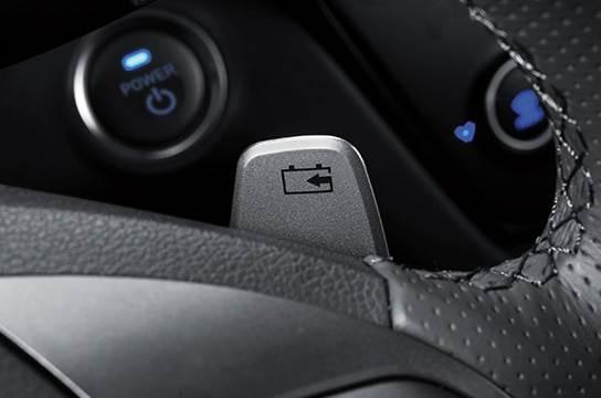 Paddle Shifters (Regenerative Brake Control)